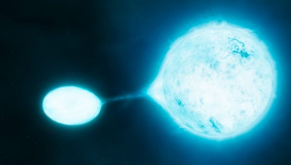 New research using data from ESO's Very Large Telescope has revealed that the hottest and brightest stars, which are known as O stars, are often found in close pairs. Many of such binaries transfer mass from one star to another, a kind of stellar vampirism depicted in this artist's impression.