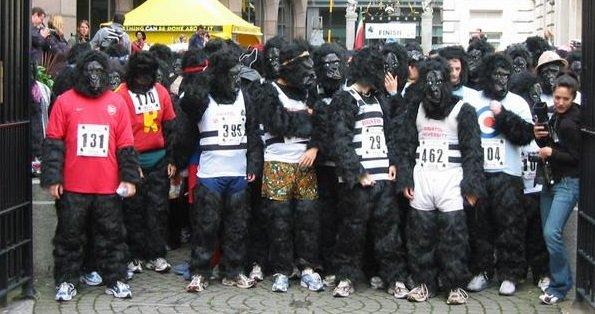 Google's New Photos App Identifies Black People As Gorillas