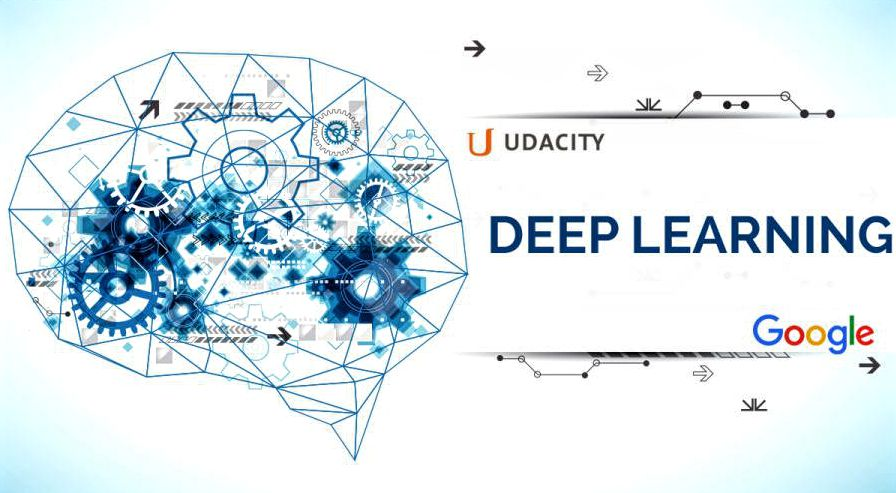 Google Deep Learning course