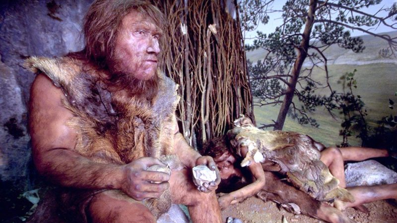 Neanderthal DNA is responsible for allergies