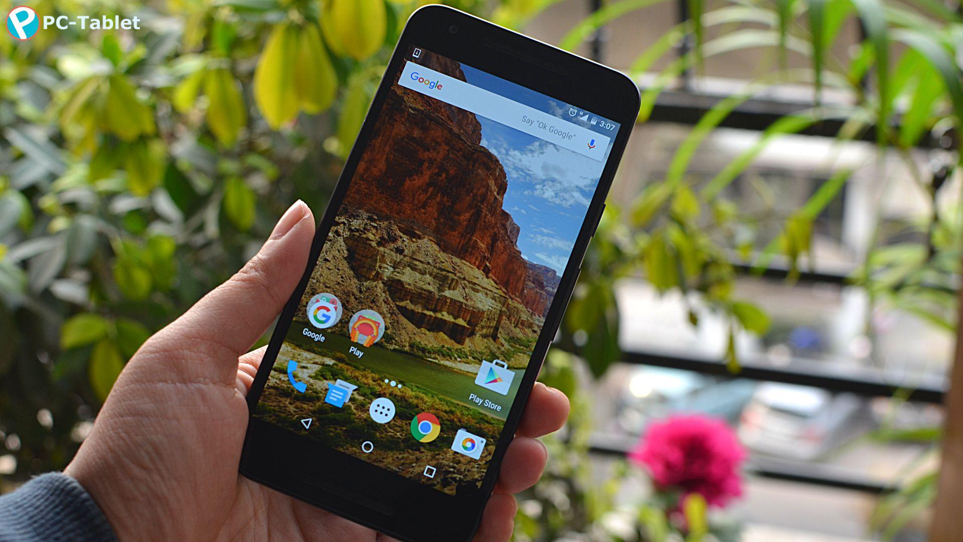 LG Nexus 5X (11)