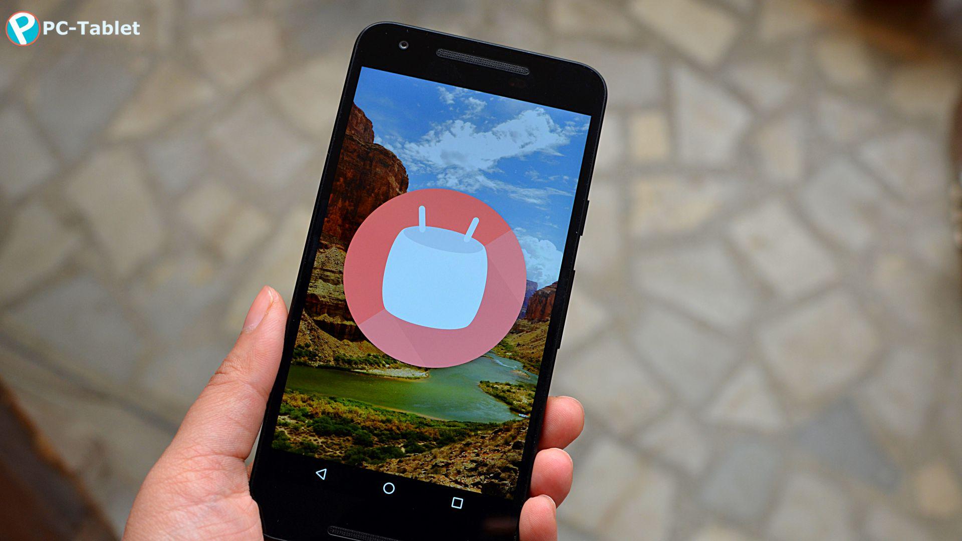 LG Nexus 5X (13)