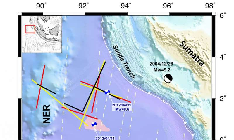 """Newly formed fracture in Indian Ocean tectonic plate may trigger quakes in future: Study"""